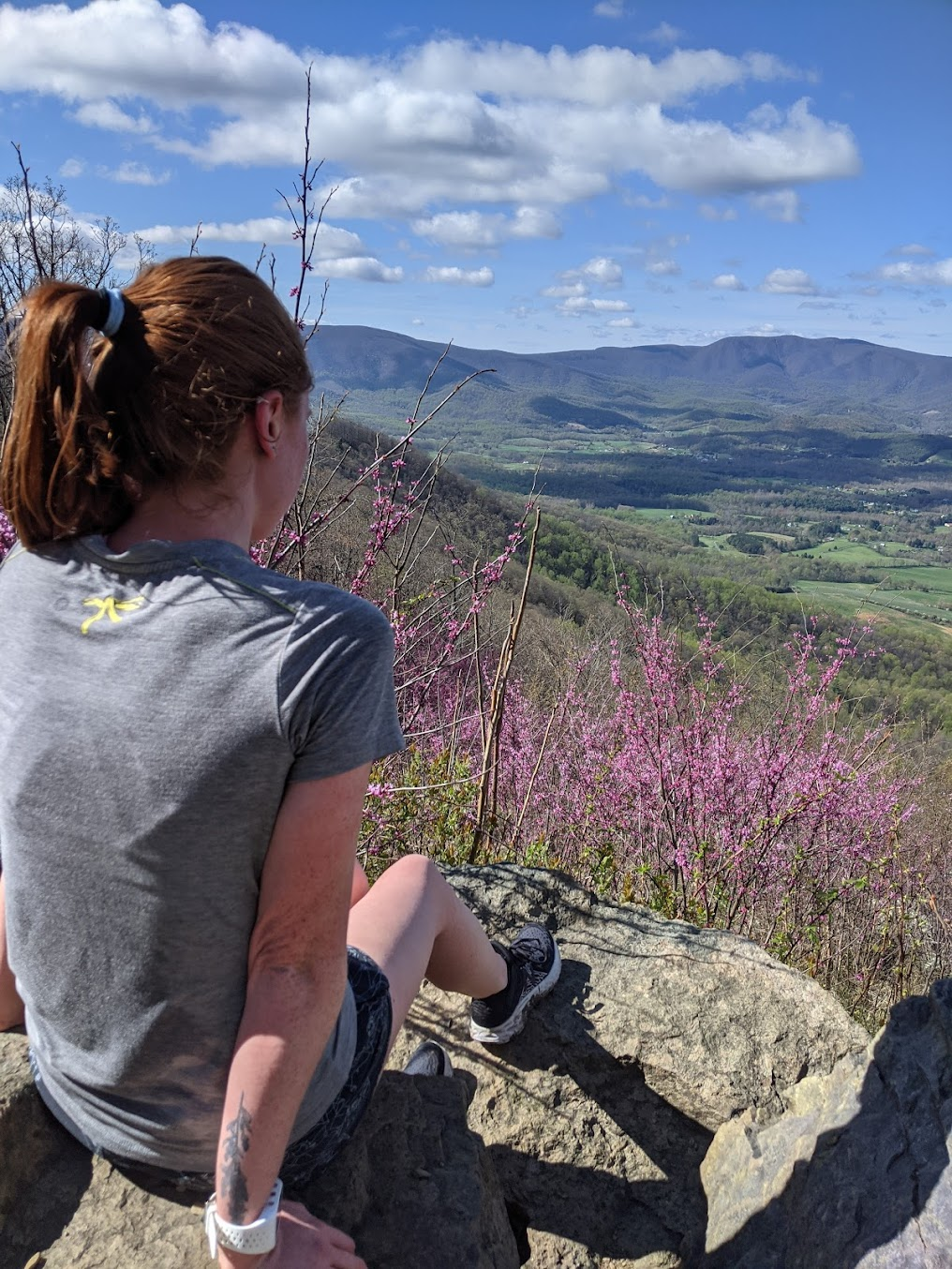 Lara paused to enjoy the view at Shenandoah National Park in early April)
